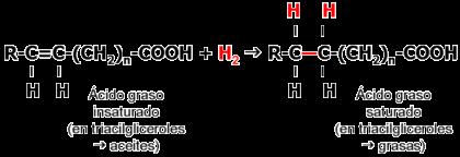 Formula General de Los Acidos Grasos Los ácidos Grasos Insaturados